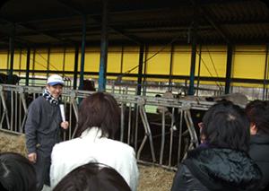 2010年 「新⽣酪農栃⽊⼯場」「栃⽊県開拓農協」⾒学